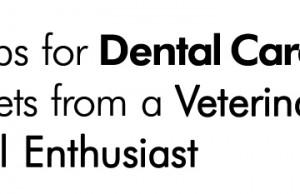 Veterinary Dental Enthusiast